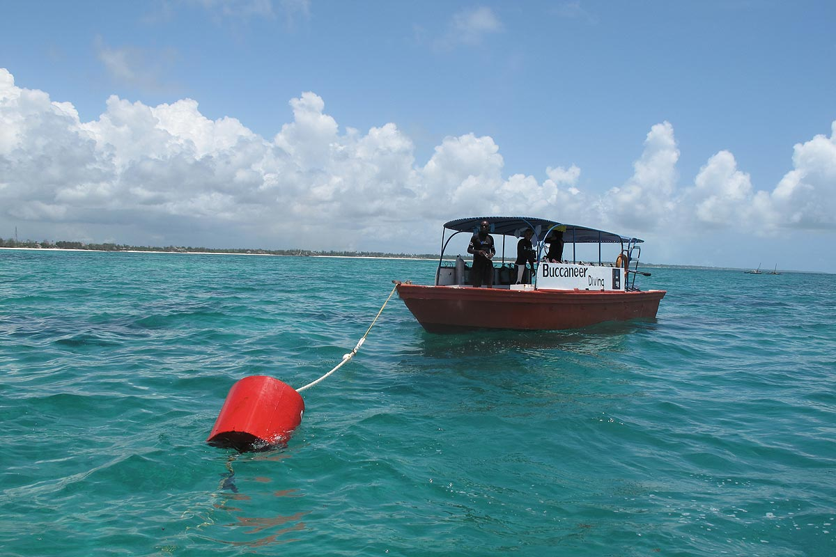 Coral Reef Relief Project Preventing Anchor Damage